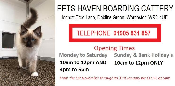 Pets Haven Boarding Cattery